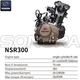 Yinxiang Engine NSR300 BODY KIT ENGINE PARTS COMPLETE SPARE PARTS ORIGINAL SPARE PARTS