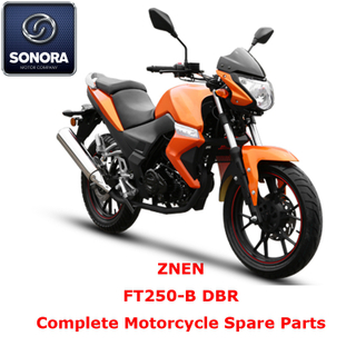 ZNEN FT250-B DBR Complete Motorcycle Spare Part