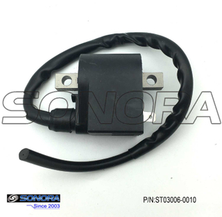 PUCH SACHS ZUNDAPP KREIDLER AX100 ignition Coil (P/N:ST03006-0010) Top Quality
