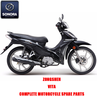 Zongshen VITA Complete Engine Body Kit Spare Parts Original Spare Parts